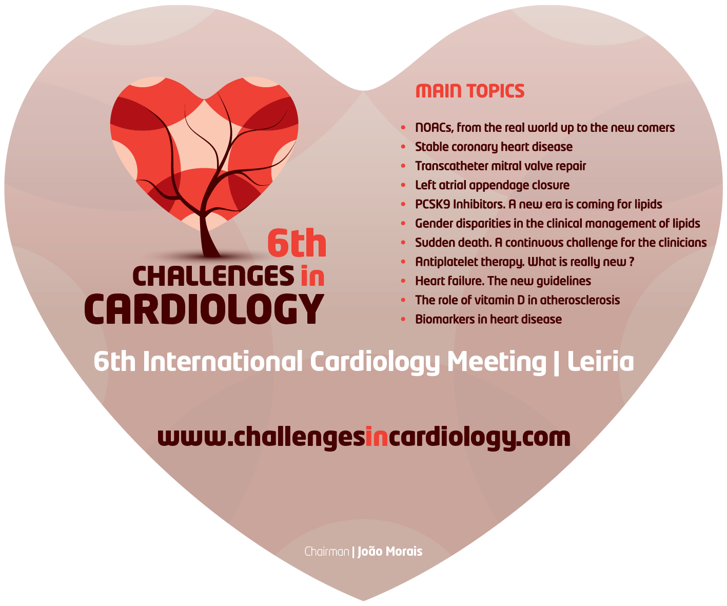 6th Challenges in Cardiology